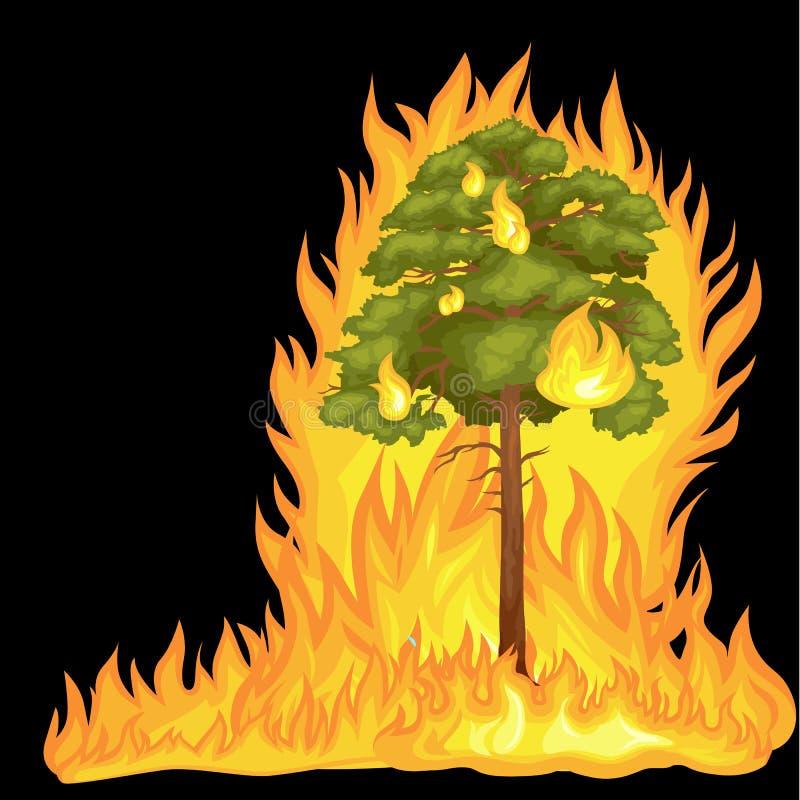 Forest Fire, Feuer im Waldlandschaftsschaden, Naturökologieunfall, heiße brennende Bäume, Gefahrenwaldbrandflamme mit vektor abbildung
