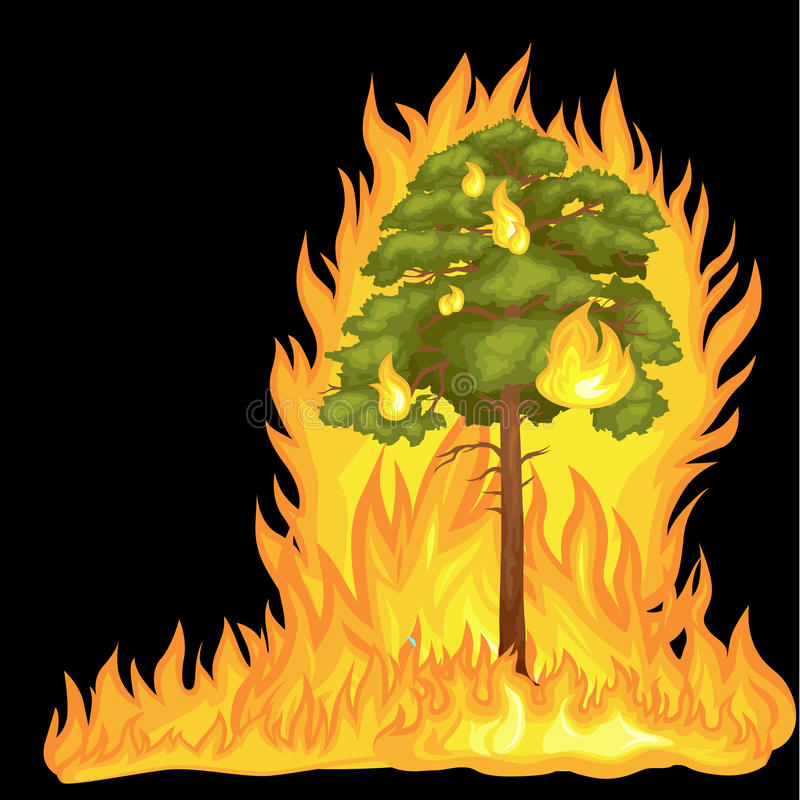 Forest Fire, fire in forest landscape damage, nature ecology disaster, hot burning trees, danger forest fire flame with vector illustration