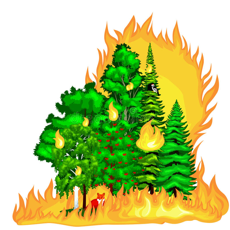 Forest Fire, fire in forest landscape damage, nature ecology disaster, hot burning trees, danger forest fire flame with royalty free illustration