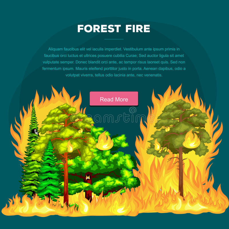 Free Forest Fire, Fire In Forest Landscape Damage, Nature Ecology Disaster, Hot Burning Trees, Danger Forest Fire Flame With Stock Image - 74157351