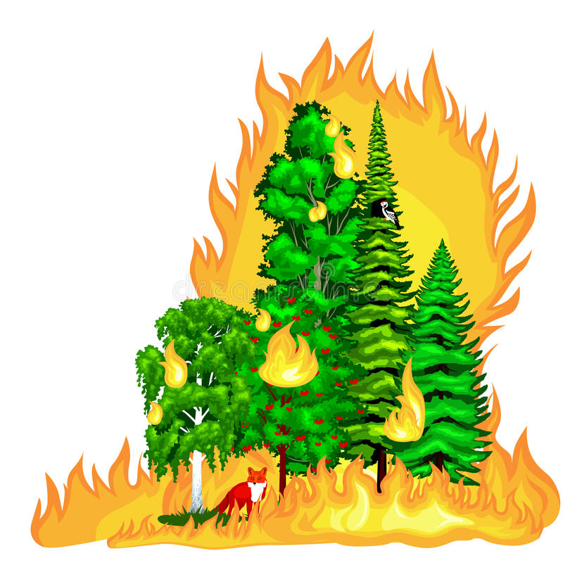 Forest Fire, le feu dans des dommages de paysage de forêt, catastrophe d'écologie de nature, arbres brûlants chauds, flamme d'inc illustration de vecteur