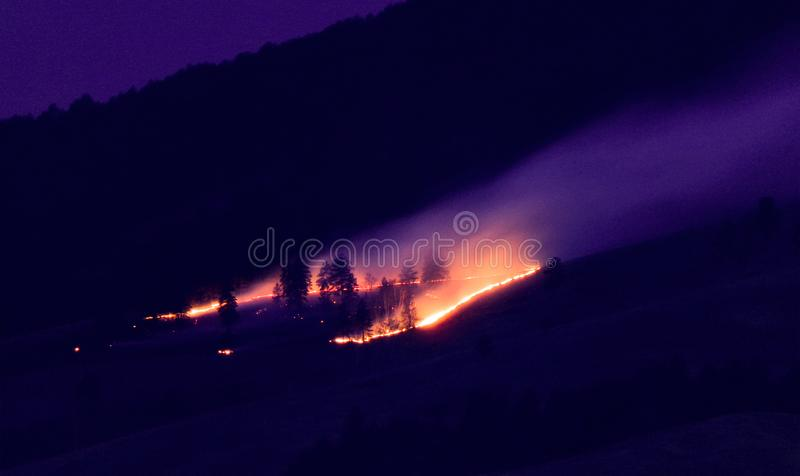 Forest fire at night. royalty free stock images