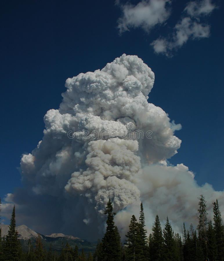 Forest fire. A pyronimbus cloud caused by a forest fire stock photography