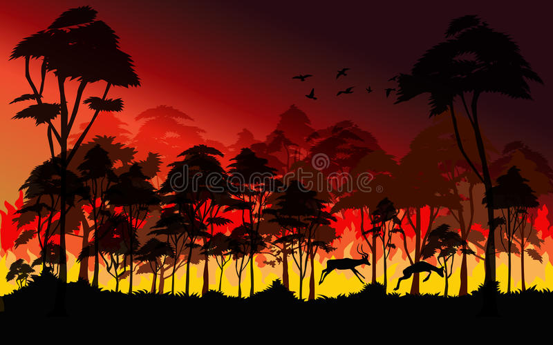 Forest fires. Wildfire burning tree in red and orange color at night vector illustration