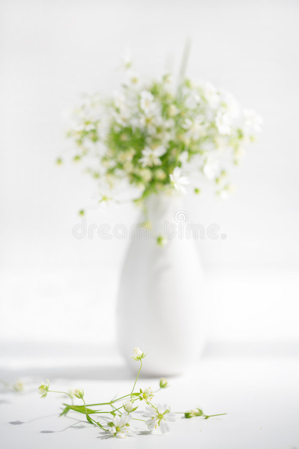 Download Forest Flowers Stock Image - Image: 2317121