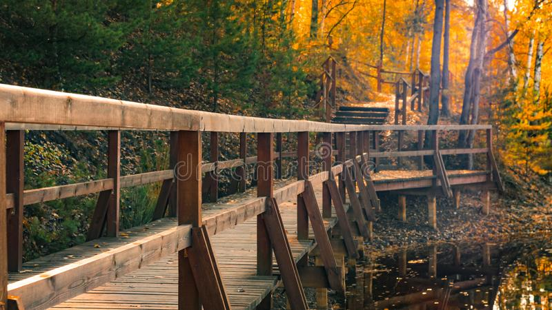 Forest footbridge on the lake shore with wooden balustrades on a beautiful autumn day. Bad Muskau Park, Saxony, Germany.  stock photo