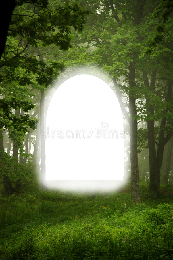Free Forest Frame Royalty Free Stock Photo - 4547805