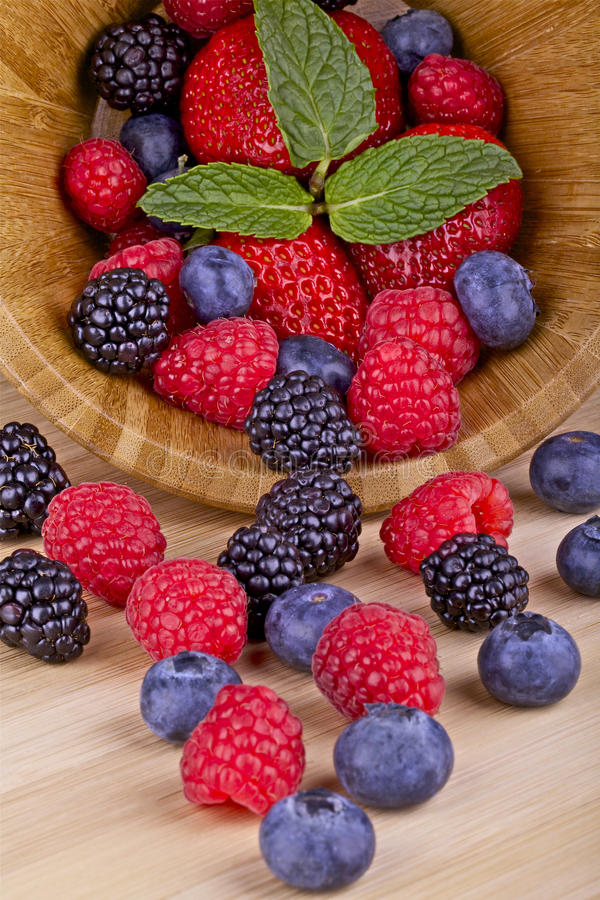 Forest fruits berries royalty free stock photo