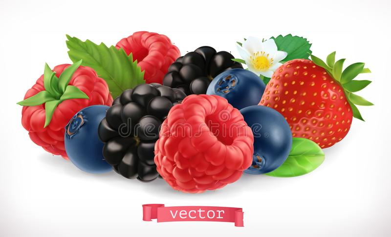 Forest fruits and berries. Raspberry, strawberry, blackberry and blueberry. 3d vector icon stock illustration