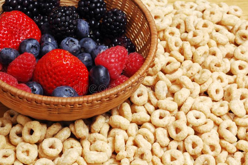 Forest fruits and cereals stock photo