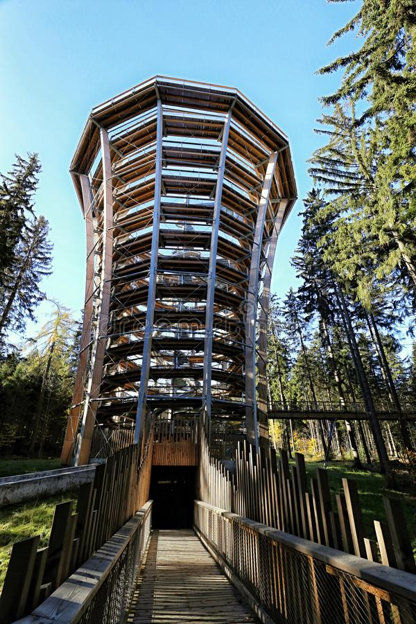 Forest fun park outlook tower. With path over the tree tops royalty free stock photos