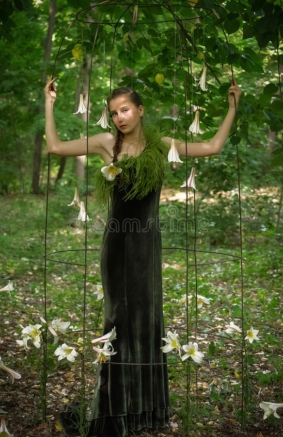 Forest Girl stock afbeeldingen