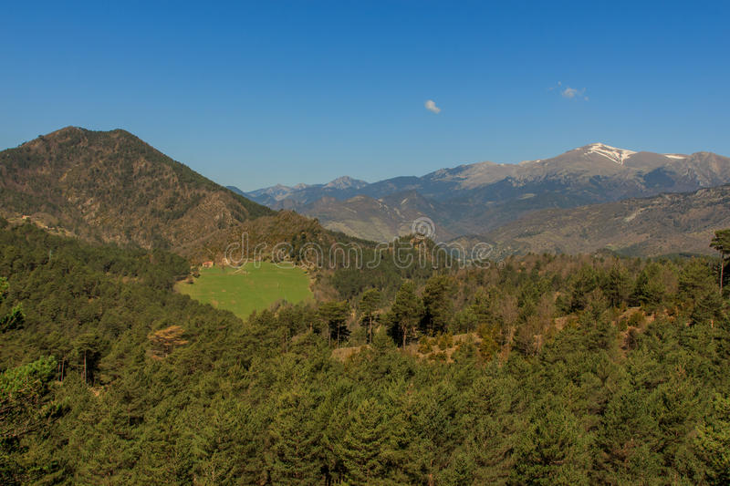 The forest gives way to a clearing, with the Pedraforca in the background royalty free stock image
