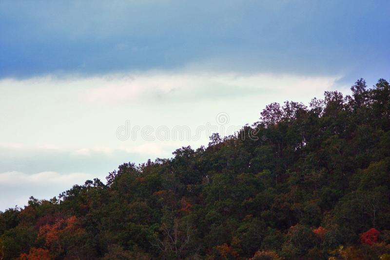 Forest Green Orange Trees Hill Ascend Clouds Telephoto Background. Far Valley Mountain Zoom royalty free stock images