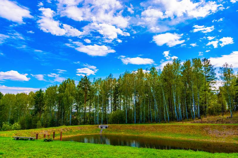 There are white clouds above the forest. stock images