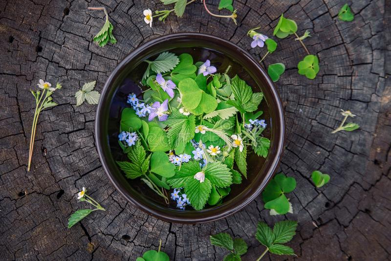 Forest herbs and flowers in a clay plate on an old wooden stub, the top view stock photo