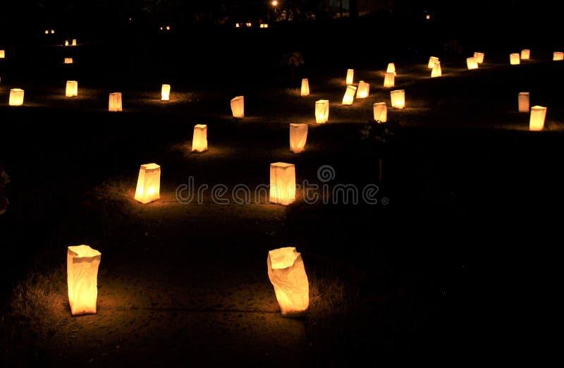 Forest Hill Luminaries fotografia stock