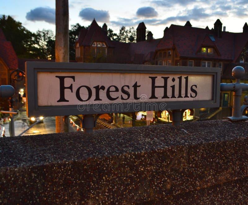 Forest Hills Queens New York-van de de Stijlarchitectuur van het Stadsteken Middeleeuwse de Gebouwenachtergrond stock afbeeldingen