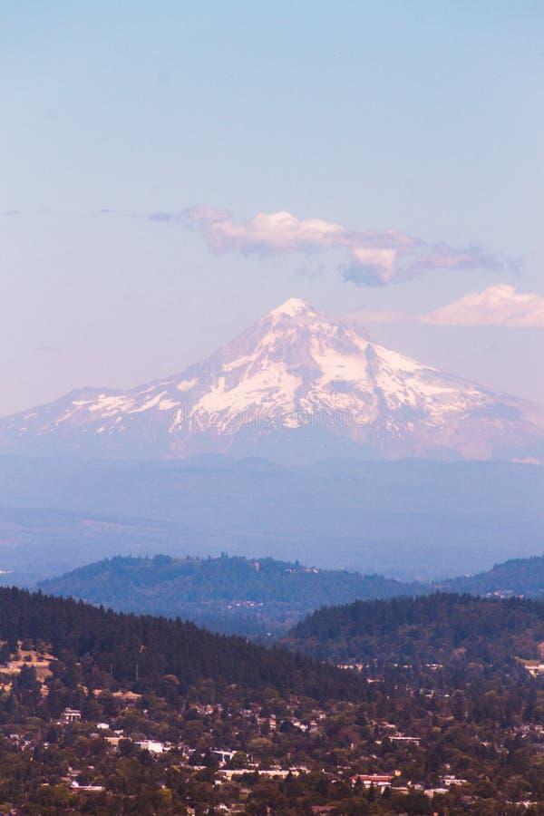 Forest Hills verde con una bella montagna nevosa nei precedenti fotografia stock