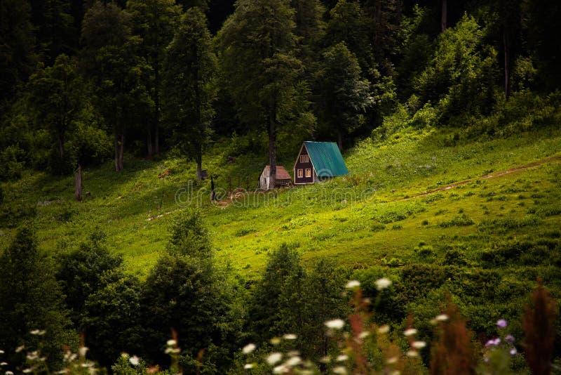 Forest House in de bergen stock fotografie