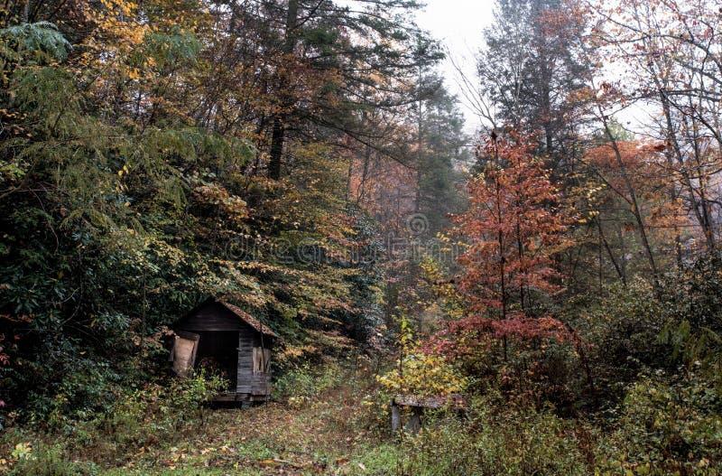 Forest Hut Shelter Kostenlose Öffentliche Domain Cc0 Bild
