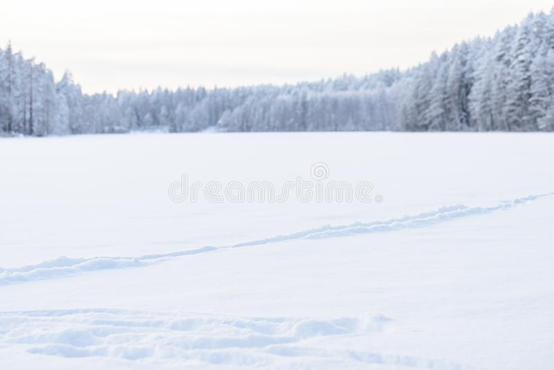 The forest on the ice lake has covered with heavy snow and sky in winter season at Lapland, Finland. Background, beautiful, beauty, big, blizzard, blue, branch royalty free stock photo