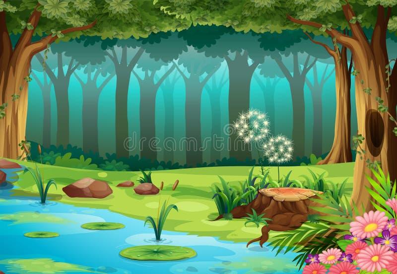 Forest stock illustration