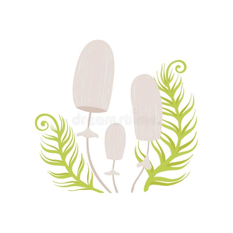 Forest Inedible Mushrooms und grüne wachsende Gras-Vektor-Illustration stock abbildung