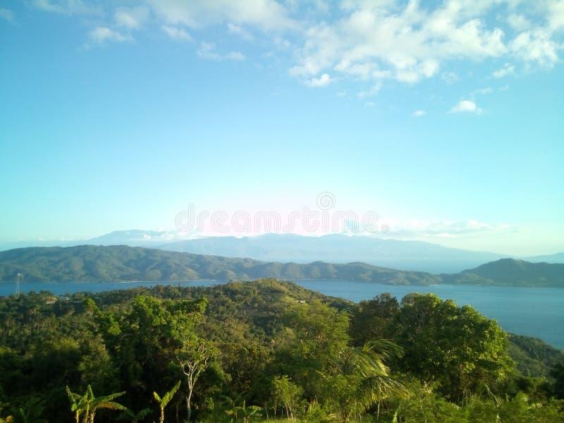 Forest Island immagine stock libera da diritti