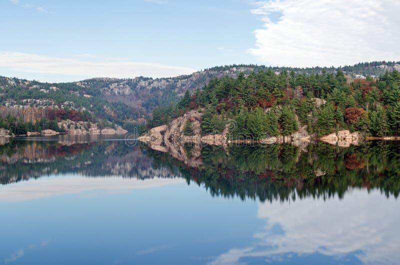 Forest Lake foto de archivo