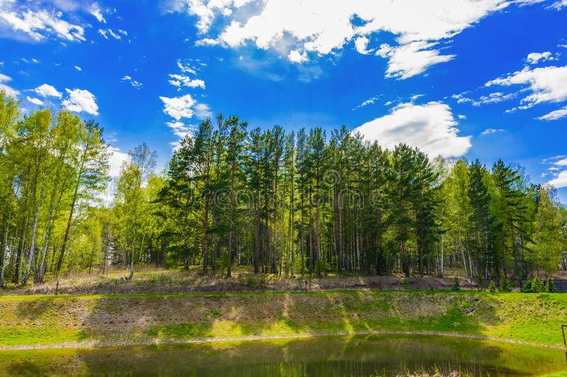 Forest lake_bright sun_big shadows from trees royalty free stock photography