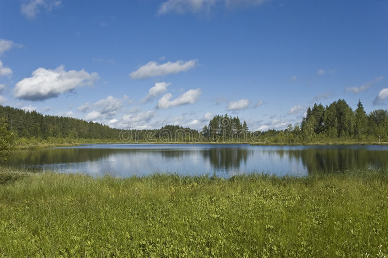 Download Forest Lake With Clouds Reflections Stock Image - Image: 8167247