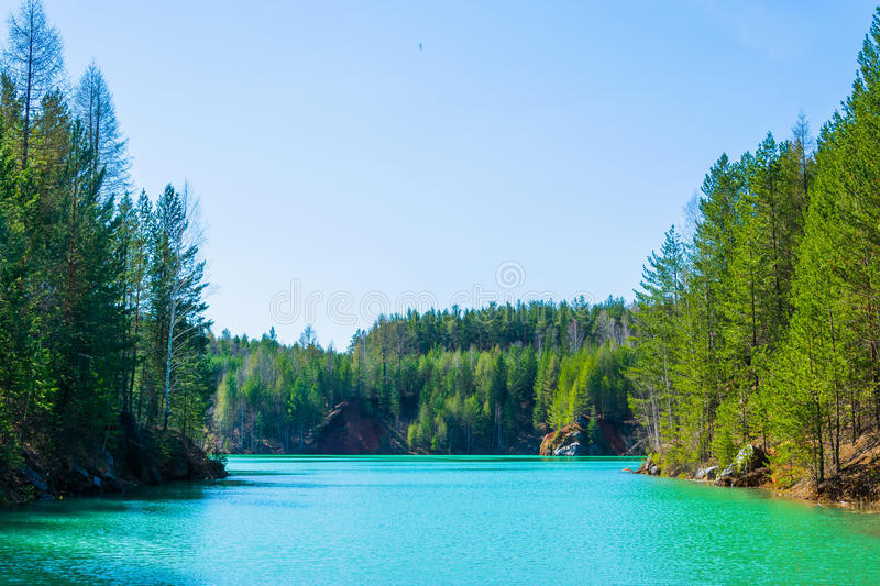 Forest lake in the early spring on sunny day royalty free stock photo