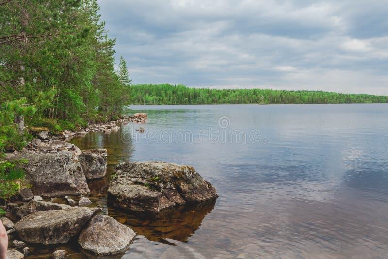 Forest Lake Kust van stenen Mooi landschap royalty-vrije stock fotografie