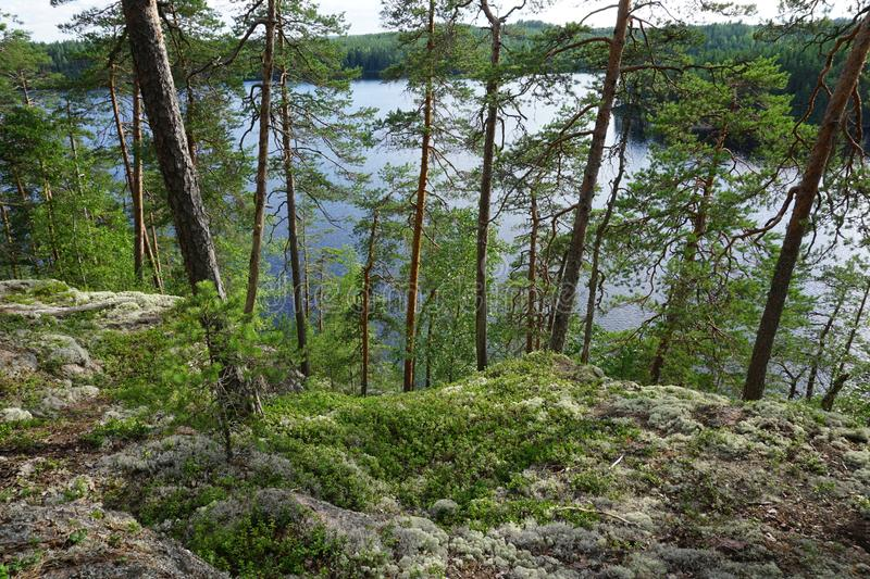 Forest lake and mossy stones in Repovesi national park, Finland stock photo
