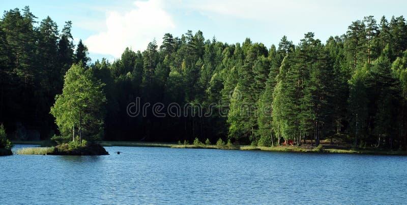 Forest lake near Oslo, Norway stock photo