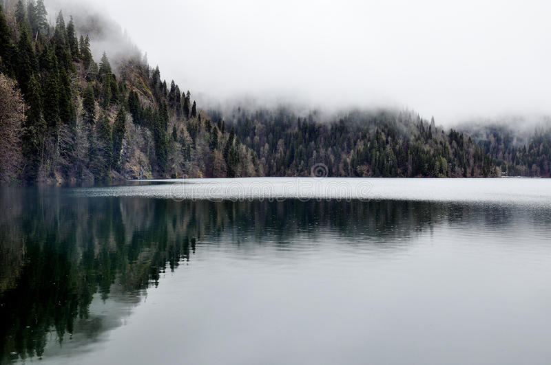Forest lake reflection with fog in Rica, national park Abkhazia. South stock photography