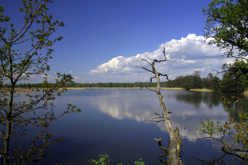 Download Forest, Lake And Sky Royalty Free Stock Photography - Image: 2306217