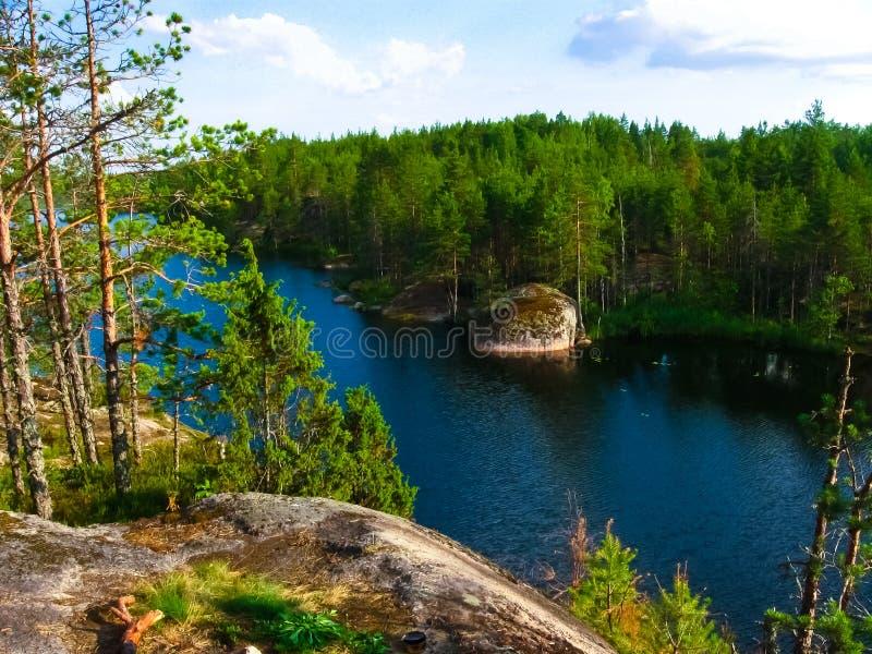 Forest Lake Travkino lizenzfreies stockbild