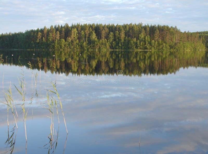 Forest Lake Vista finlandese e scandinava tradizionale fotografie stock