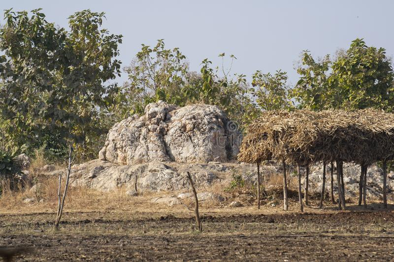 Forest Land Encroachment and Fossils Destruction. Dewas District Madhya Pradesh , India royalty free stock photography