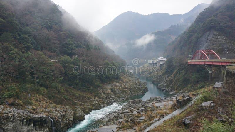 Forest Landscape con il fiume e la ferrovia immagine stock libera da diritti
