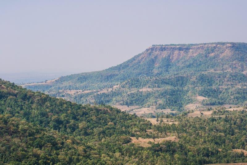 Forest Landscape dans le secteur de Dhar image libre de droits