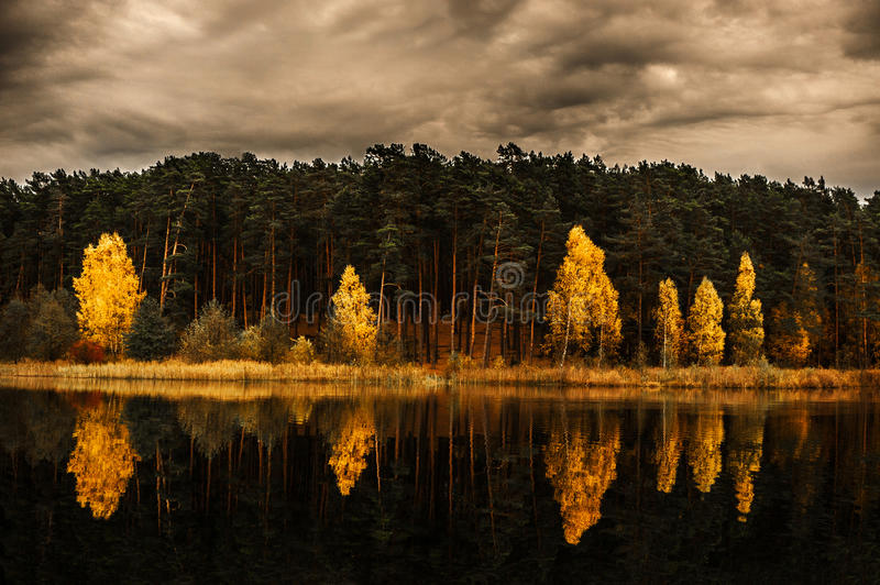 Forest and Landscape wit reflection on lake. Vilnius area, capital of Lithuania. Autumn time royalty free stock photography