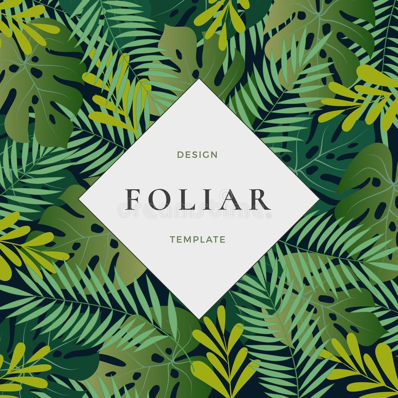 Forest Leaves Abstract Vector Background tropical con la plantilla de la bandera La hoja de palma de Monstera, el helecho y el ot stock de ilustración