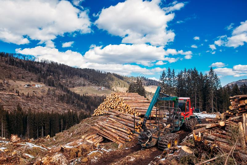 Forest log truck tree harvester working woodcutter Alps Italy. Concept industry cut wood royalty free stock photography