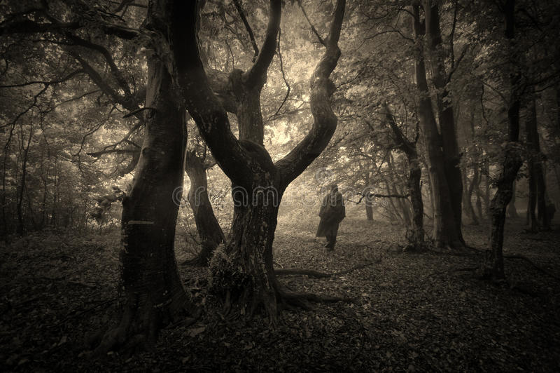 Forest with man on Halloween royalty free stock photo