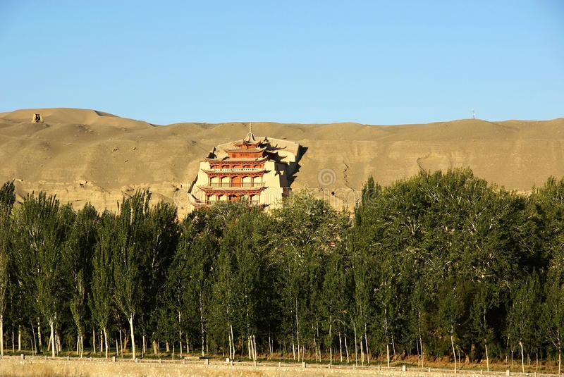 Forest with mogao grottoes royalty free stock photography