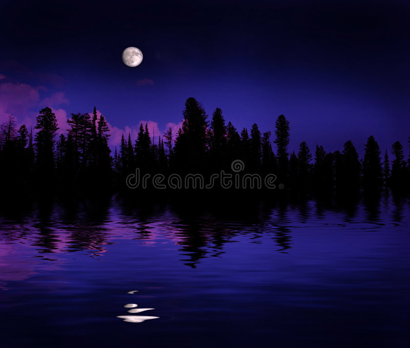 Download Forest Moonrise Reflection stock image. Image of black - 3753983