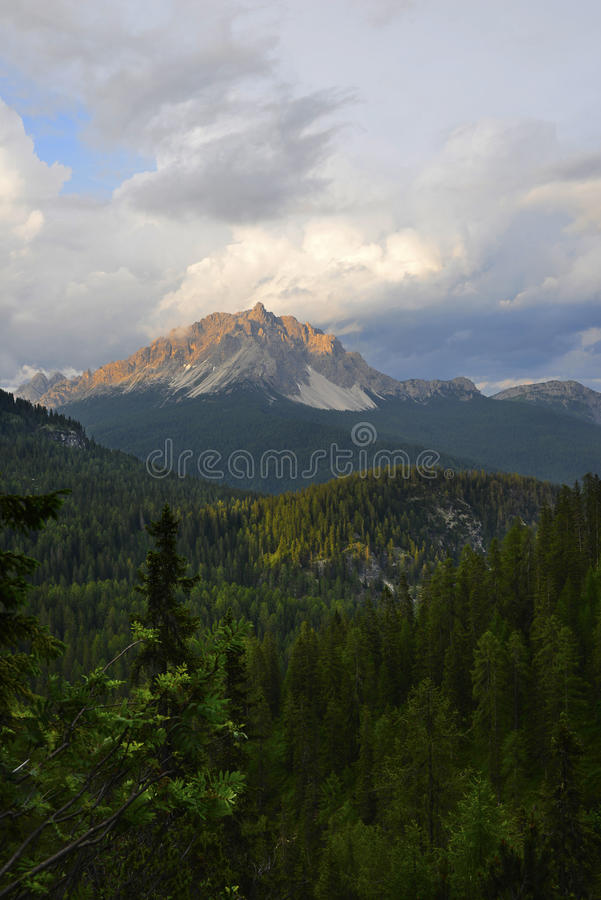 Download Forest and mountain stock photo. Image of italy, mountains - 32345714